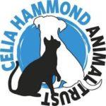 celiahammond-logo